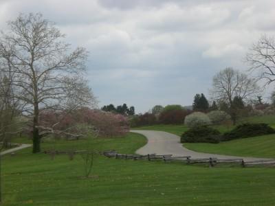 Bernheim Spring 110
