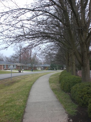 Louisville Feb '10 008
