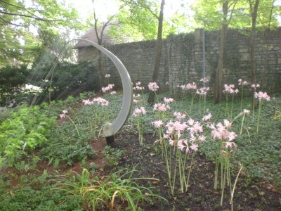 Bernheim Spring 093