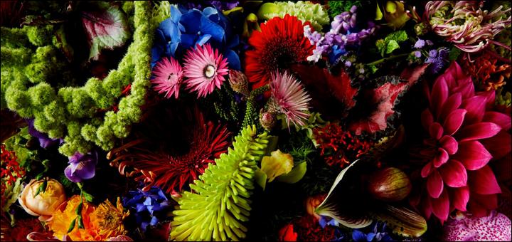 00flowers6